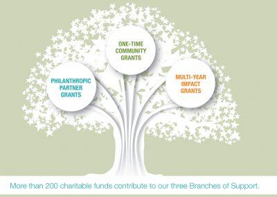 LVCF Tree Infographic